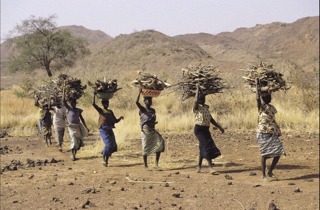 L'Africa non è povera, ma impoverita